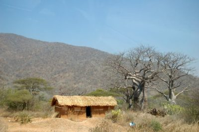 Day 107 – 21.7.2011  Baobab Valley Camp